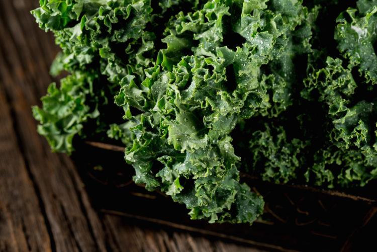 Closeup of wet raw kale