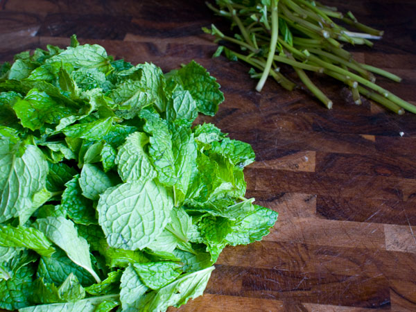 the benefits of mint, mint leaves, why should I eat mint leaves, health benefits of mint