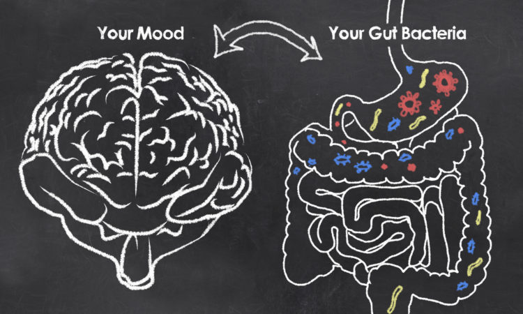 Tips to Balance Your Hormones and Improve Gut Health