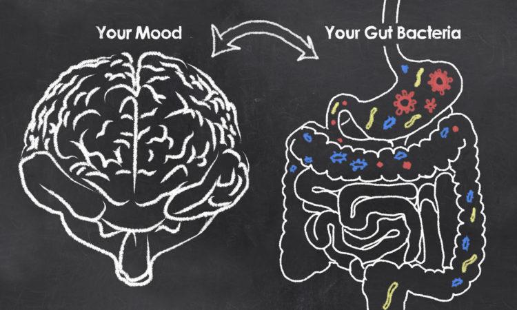 Gut Health and Hormones
